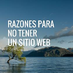Razones para NO tener un sitio web